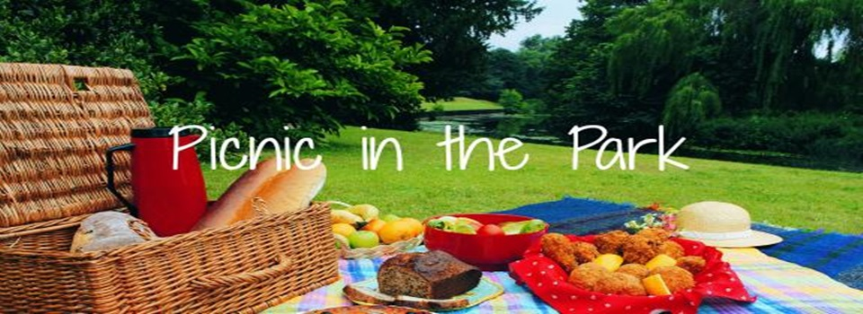 picnic in the park (960x350)